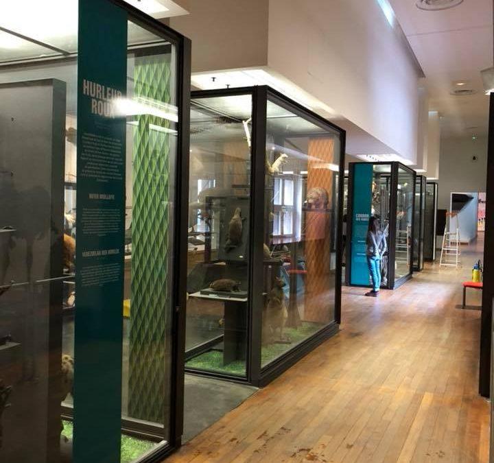 Signalétique Muséum Aquarium
