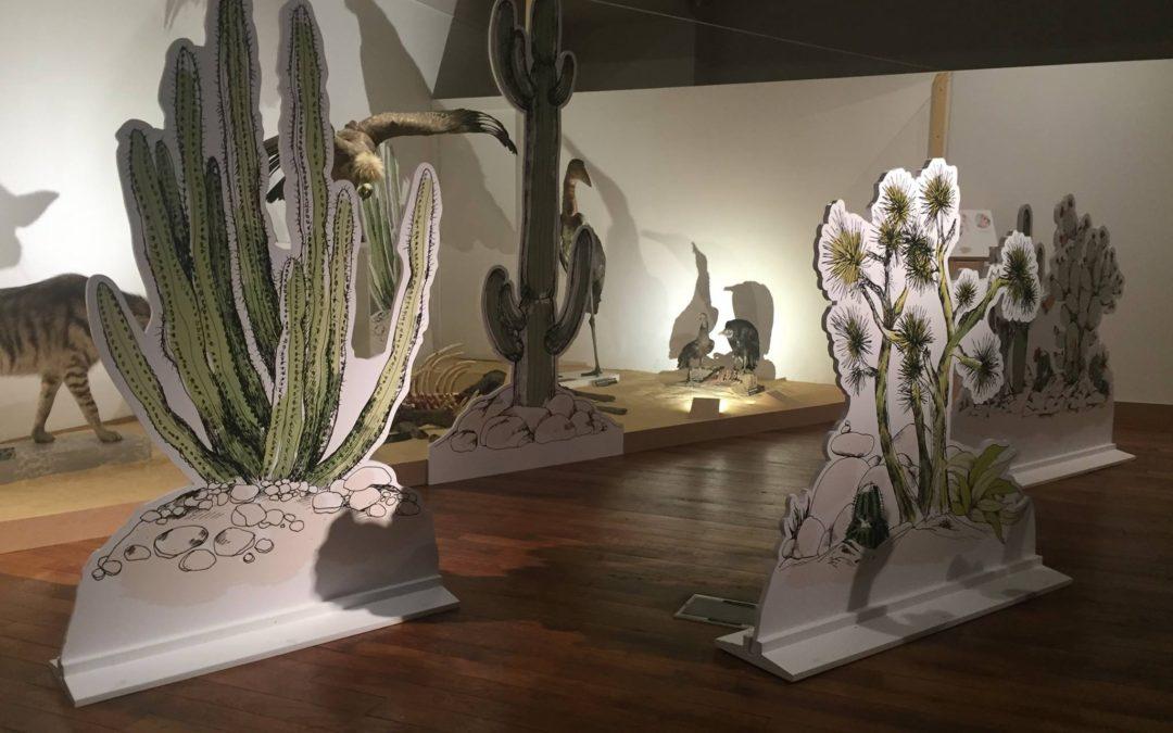 Exposition 'Moches' au Museum Aquarium de Nancy