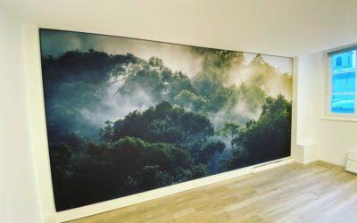 Des paysages tropicaux pour NANCOMCY